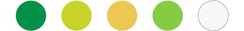 Branding Color Palette Avobite