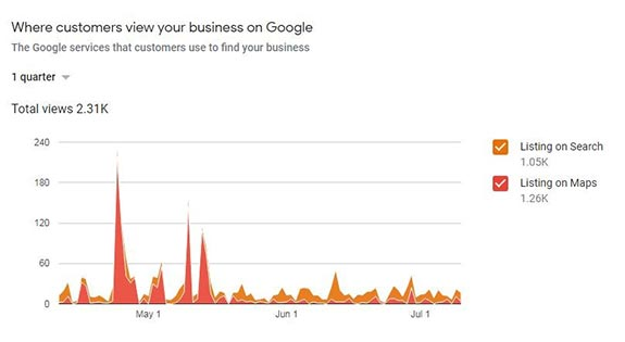 Google My Business Customer Search View